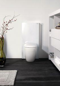 Wasser sparen Toilette